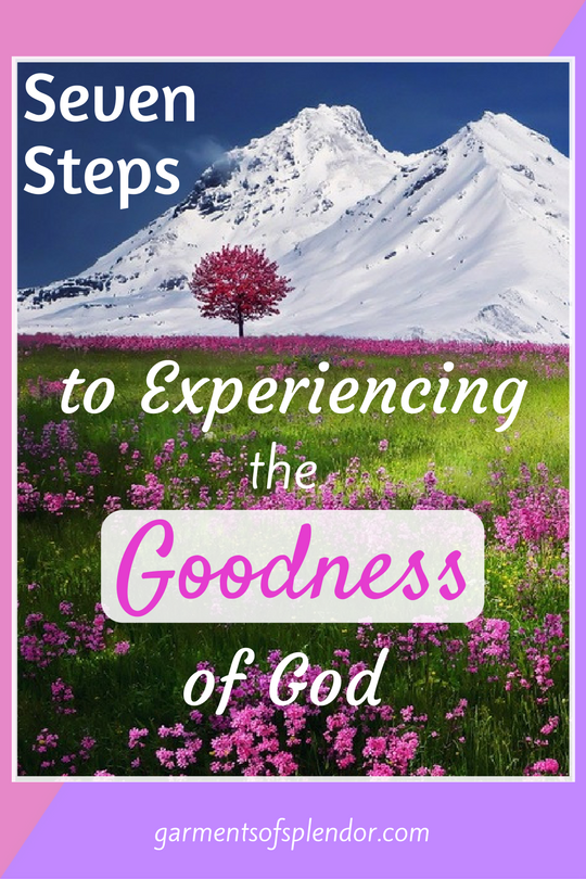 Looking for a new way to experience the goodness of God? Climb the mountain of your spiritual walk with Christ and experience his goodness like never before!