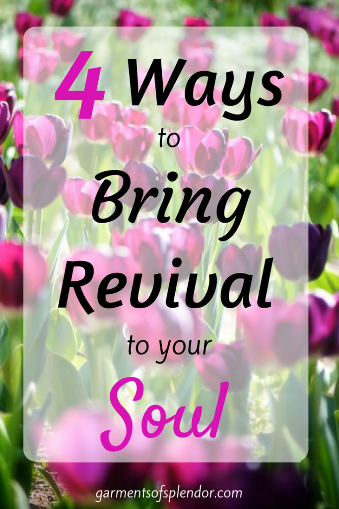 Discover four powerful ways you can revive your soul through the Word of God!